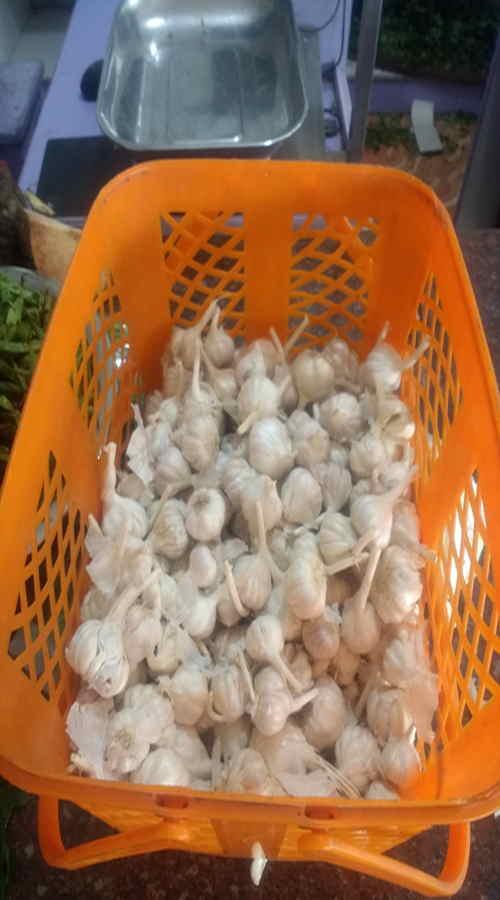 Garlic Poondu